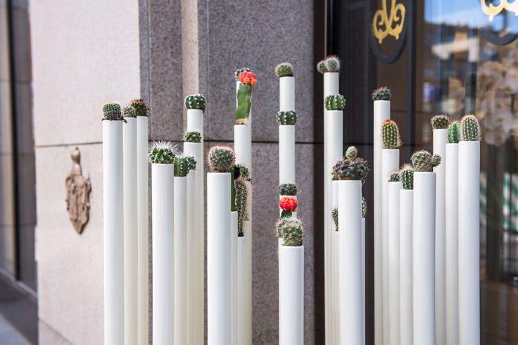 Cactus de Cartier Petrovka Installation