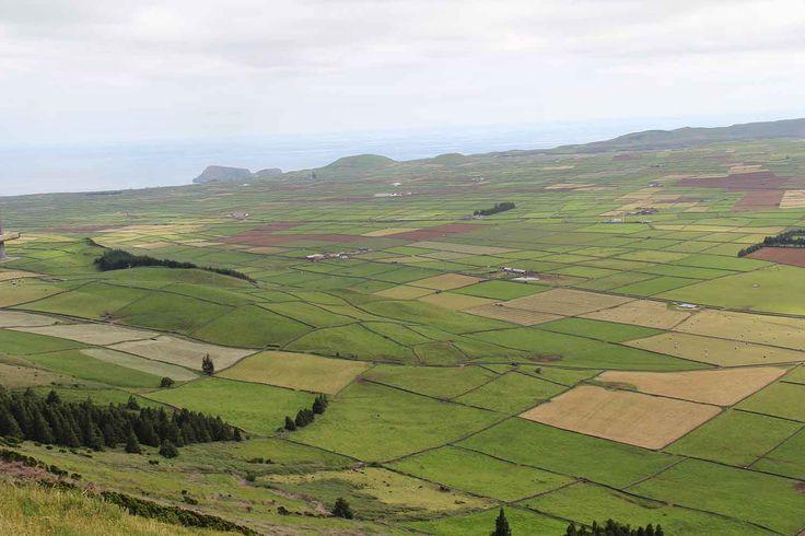 Serra do Cume, Terceira Island, Azores. Photo by Leila Monteiro Lins. DISCOVER magazine.