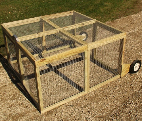 32 curated chickens ideas by monicab0640 a chicken easy for Chicken run for 6 chickens