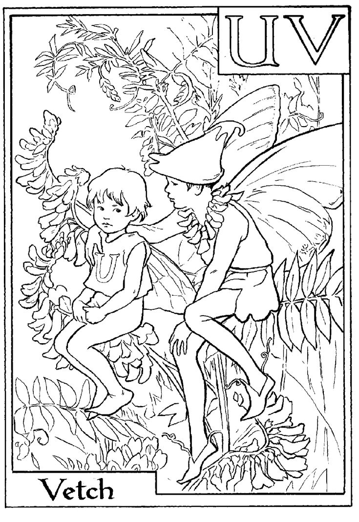 fairy printable colouring page uv is for vetch not sure why they did not