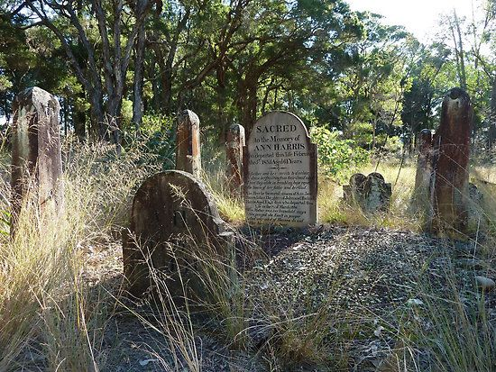 """The beautiful and isolated Castlereigh cemetery, is the only reminder left of """"the Castlereagh"""" Governor Macquarie had in mind, when he announced his """"Five Towns"""" in December 1810. The cemetery was severely vandalised earlier this year."""