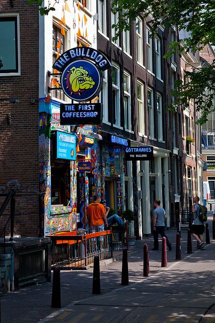 The Bulldog Coffee Shop, Amsterdam