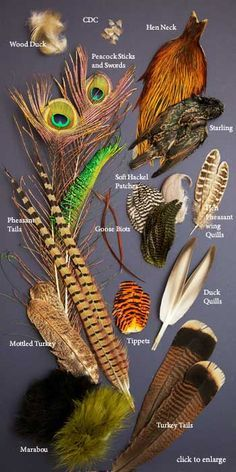 soft-hackle-350-names.jpg (350×700) For more fly fishing info follow and subscribe www.theflyreelguide.com Also check out the original pinners site and support