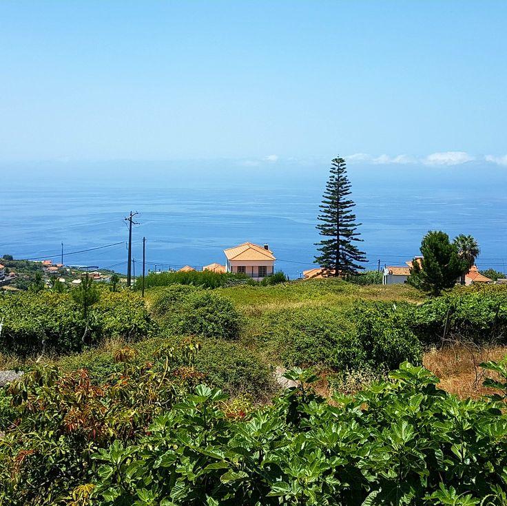 Sentir o campo e ver o Mar! @visitmadeira #madeiraislands #quintaalegre #inspiracao