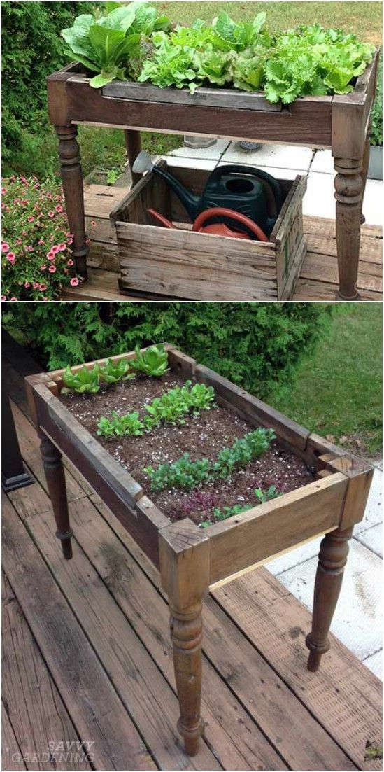 Old Coffee Table Planter