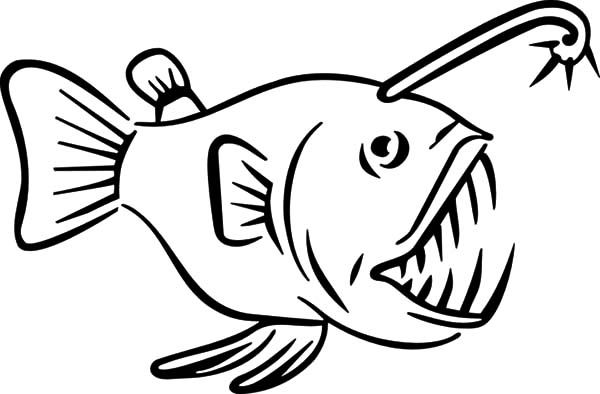 angler fish carnivore fish coloring pages  best place to