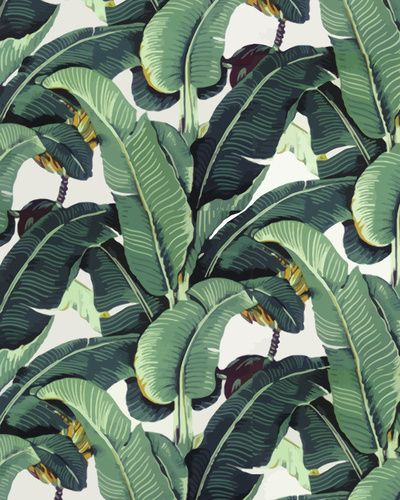 Tropical Banana Leaf Print Stretched Canvas