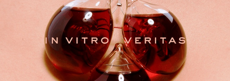 'In Vitro Veritas' @Pitars Temporary exhibition for Cantine Aperte hosting young designers from UniBZ and their creative wine drinking approach