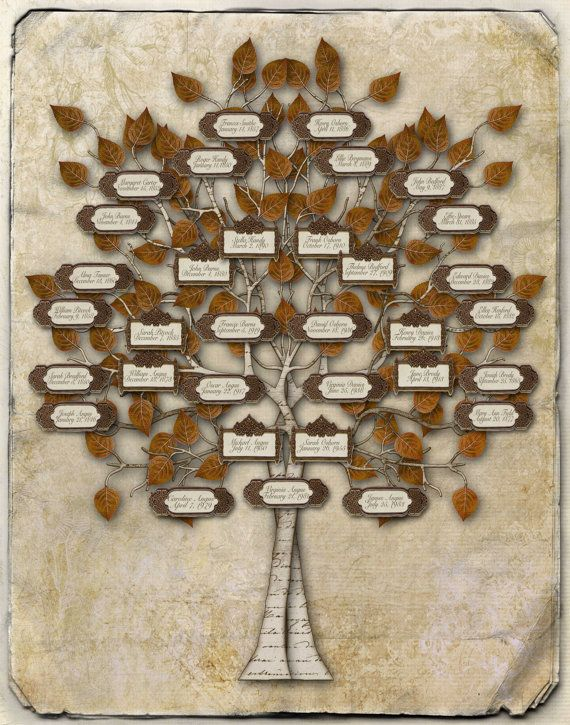 family tree design 33 individuals with labels - Family Tree Design Ideas