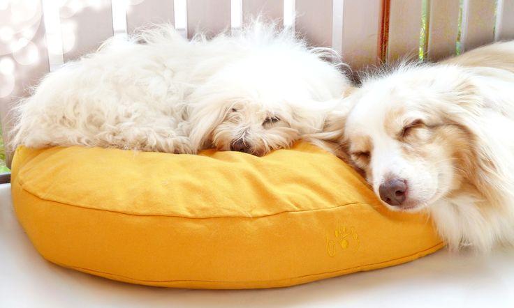 Organic Dog Beds to feel fine / Bio Hundebetten zum Wohlfühlen  #organicdogbed #organic #bio #dogbed #biohundebett #eco #ecological #design #öko #ökologisch #biobaumwolle #organiccotton