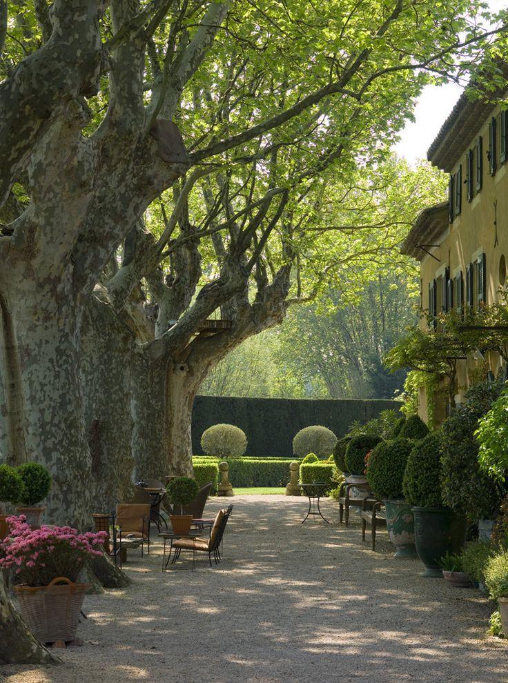 394 Best Peak Into Our Secret Garden Images On Pinterest Gardening Secret Gardens And Decks