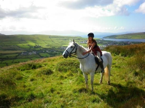 Welcome to Dingle Horse Riding. Set on the dramatic and beautiful west coast of Ireland, we specialise in two hour to week long riding holid...