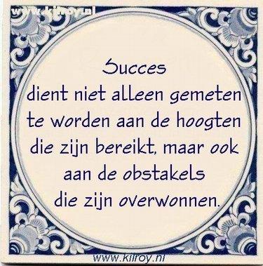 Succes dient niet alleen gemeten te worden aan .....