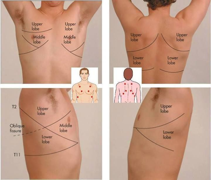 Breath sound locations