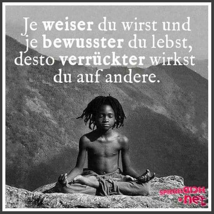 Pin Von Anja Terporten Auf Meditation Fur Anfanger Weisheiten Zitate Spruche Zitate Lebensweisheiten Zitate