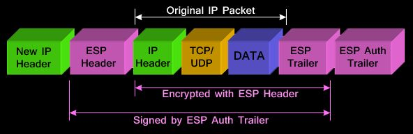 Understanding VPN IPSec Tunnel Mode and IPSec Transport Mode – What s the Difference? #ipsec, #modes, #tunnel, #transport, #esp, #ah, #encryption, #protocol, #security, #encapsulation, #decapsulation, #difference, #compare, #network, #gateway, #peer, #secure, #ip, #header, #protected, #unprotected…