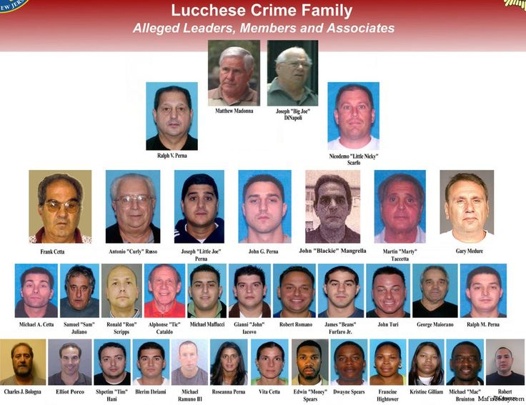 italian crim families | ... in Lucchese crime family bust from 'Operation Heat' : MAFIA TODAY