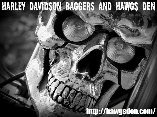 HARLEY DAVIDSON BAGGERS HAWGS DEN