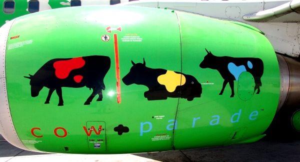 Kulula's cow parade