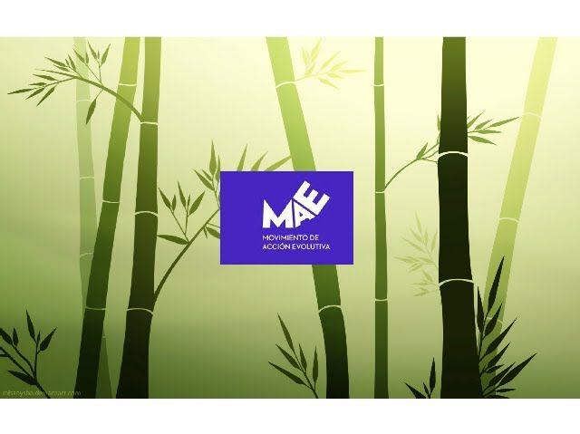 MaE_Movimiento de Acción Evolutiva