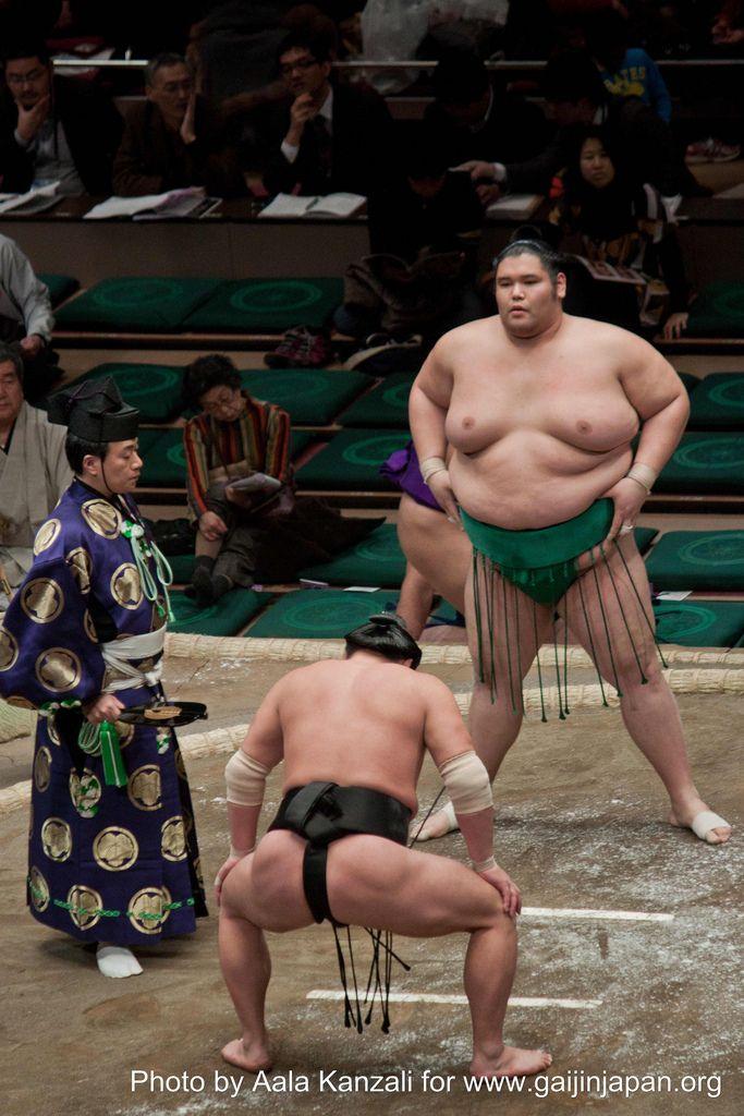 sumo tournament - ryogoku - tokyo - japan - referee & sumo