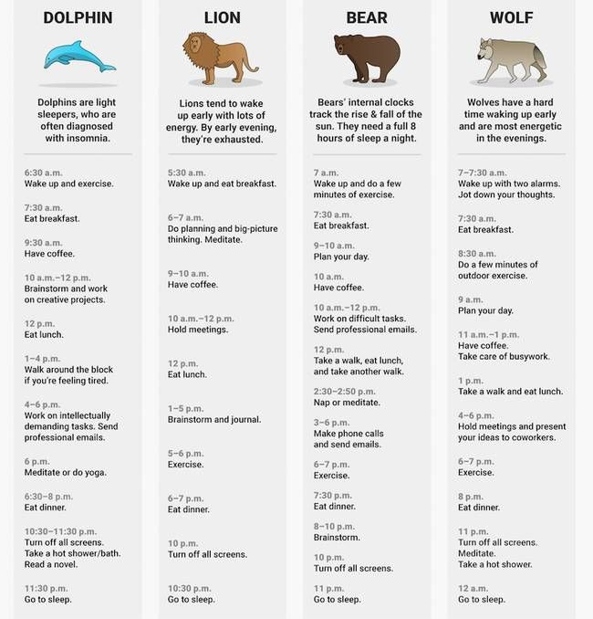 What's your sleep animal … wolf, lion, bear or dolphin?