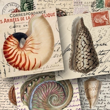 Detailed, colorful seashell engravings from an 1800s textbook are paired up with 100-year-old postcards from Italy, France, and Germany. Printable craft sheet by piddix.