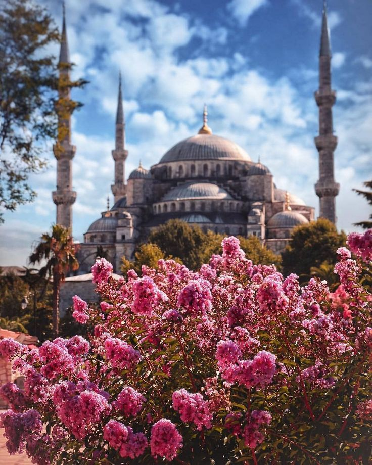 In Istanbul, the joy of spring …