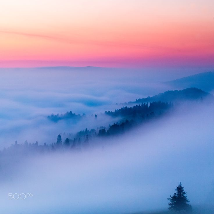 "Sunrise is comming - blue hour at Pieniny national park  Follow me on <a href=""https://www.facebook.com/lubosbalazovic.sk"">FACEBOOK</a> or <a href=""https://www.instagram.com/balazovic.lubos"">INSTAGRAM</a>"