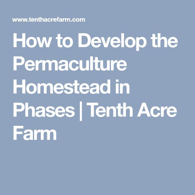 How to Develop the Permaculture Homestead in Phases | Tenth Acre Farm