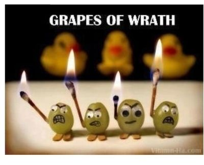 #funny Grapes! …. wait for it…. of wrath!