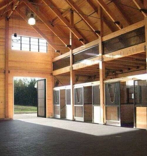 Amazing horse barn stalls