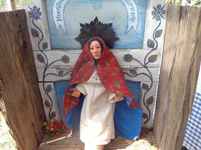 me nacieron para quedarme....un dia de primavera de 2012 en la comunidad de Peñalolen...