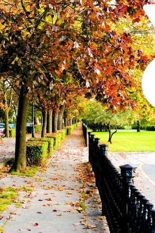 Vác, Hungary #autumn #fall #ősz #Hungary
