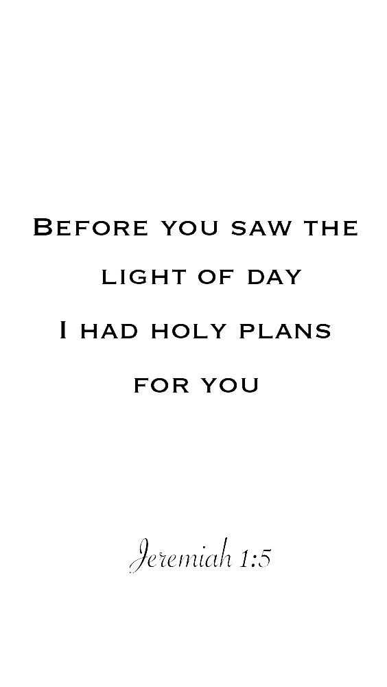 HOLY plans. Not any ole' plans. You're something fierce.