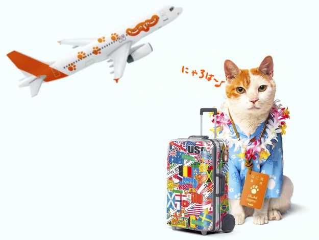 NyaRan, Japan's Travel Agency Spokes-Cat---guess where I am headed?