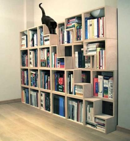 The creative book shelf is equipped with a ladder for cat.