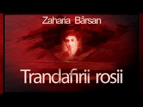 Trandafirii rosii - Zaharia Barsan