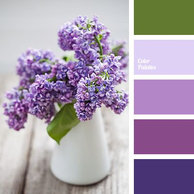 Color Palette #3275