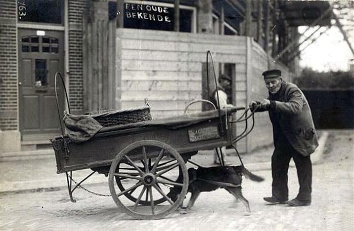 """1911. Sweelinckstraat. De """"Soester Eierenboer"""" met zijn hondenkar"""
