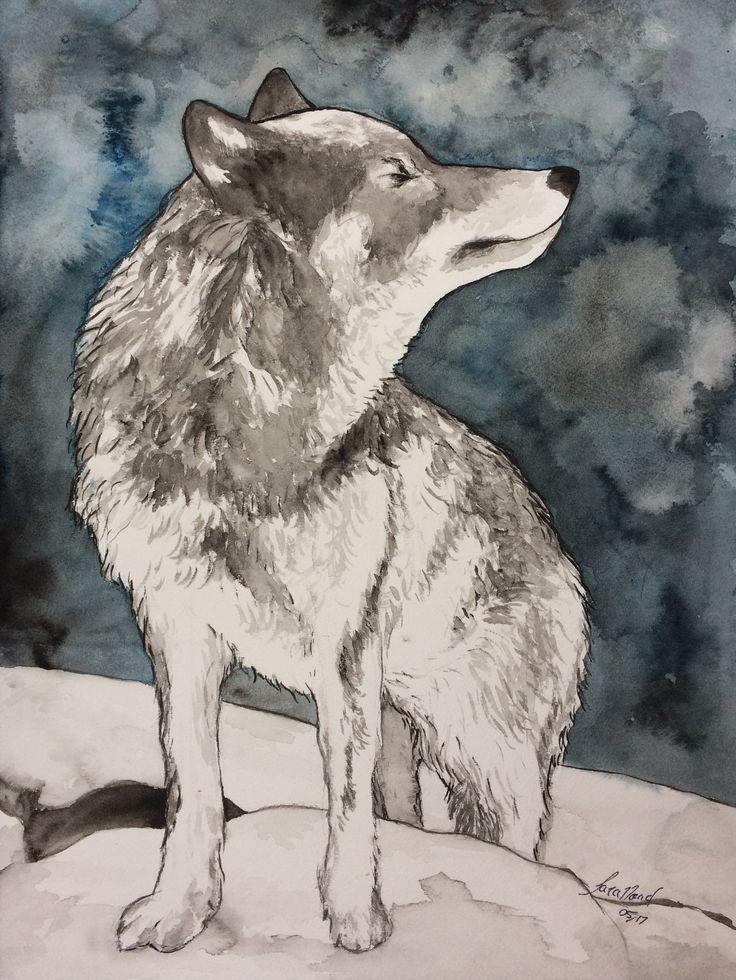 Midnight wolf. ~ Sara Noad