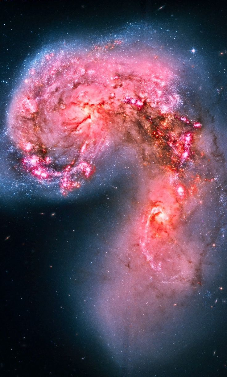 """thedemon-hauntedworld: """"Antennae Galaxy by Hubble The Antennae Galaxies, also known as NGC 4038/NGC 4039, are a pair of interacting galaxies in the constellation Corvus. They are currently going..."""