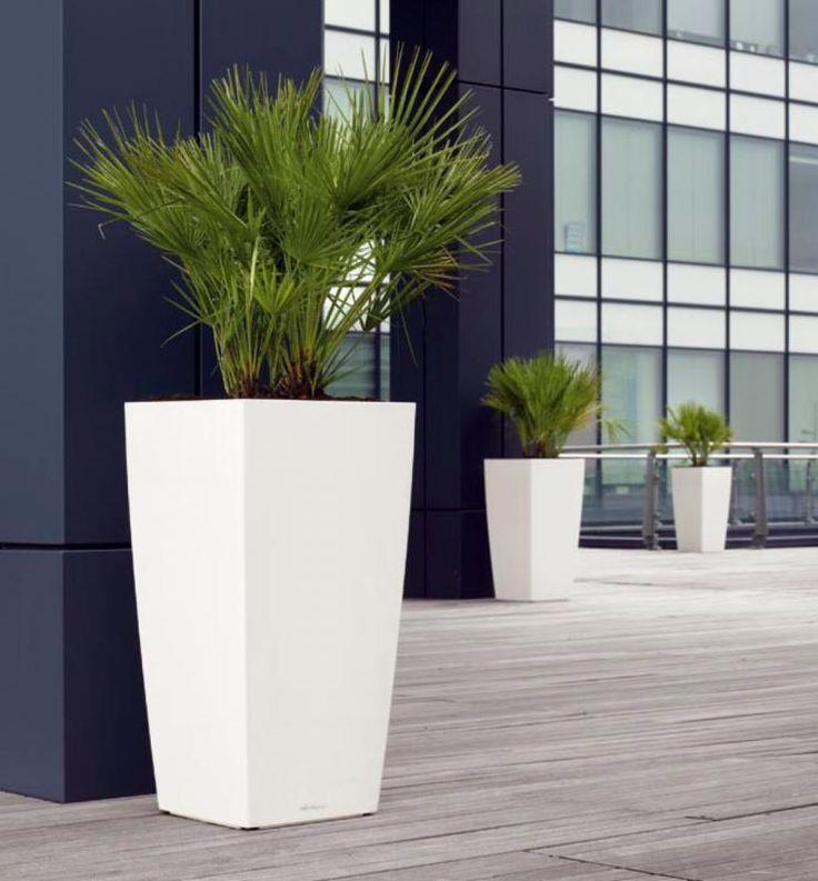 Lechuza Cubico | Lechuza ® kunststof plantenbakken (binnen & buiten) | www.plantenbak.com