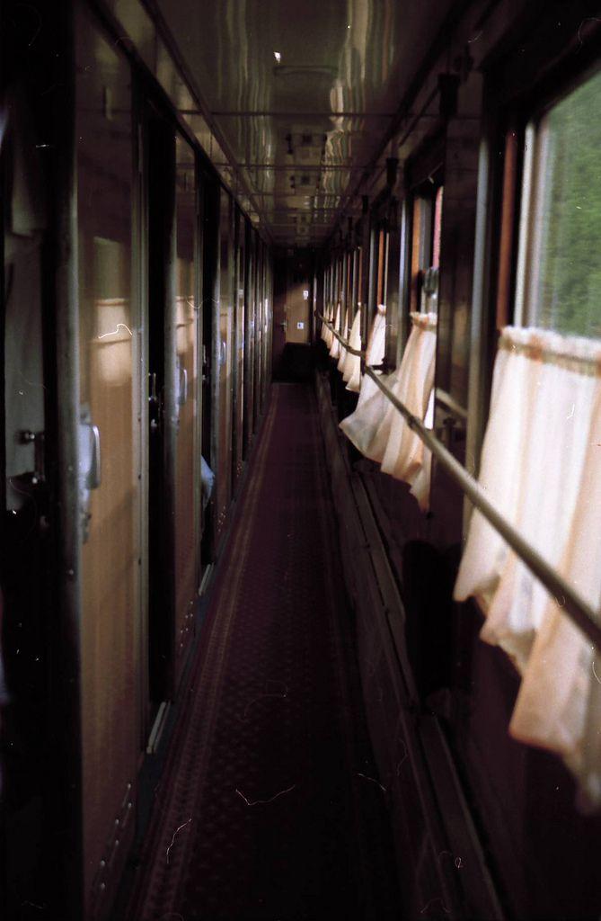 On a train http://baileysarver.tumblr.com/post/57270300030/raises-nature-vintage-blog