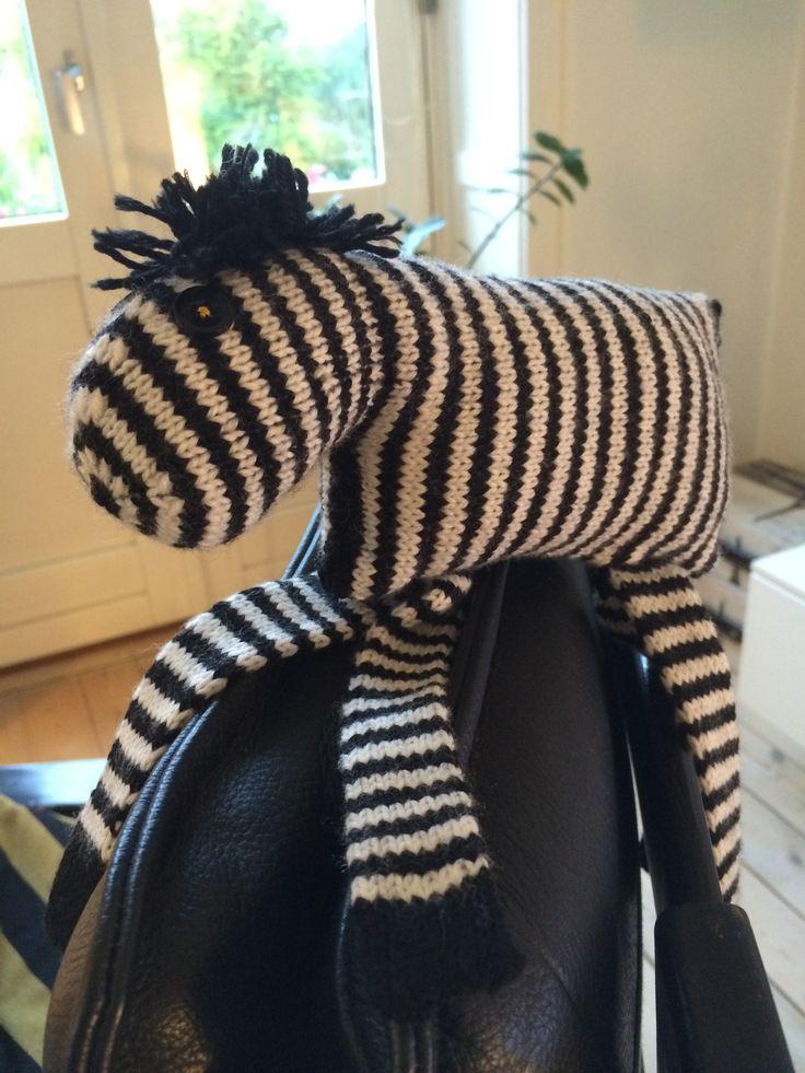 Ny little zebra