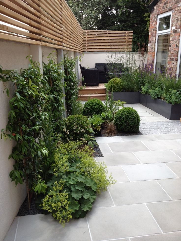 This is a contemporary take on trelliswork in a much smaller garden than yours. They've chosen a pale grey paving and grey granite setts to go with the rendered walls which are also painted a pale creamy colour. As you already have lovely walls, our scheme will be warmer-looking. I don't know why they discontinued the battened trellis at the rear of this small garden. I like the way they've used evergreen climbers against the walls.