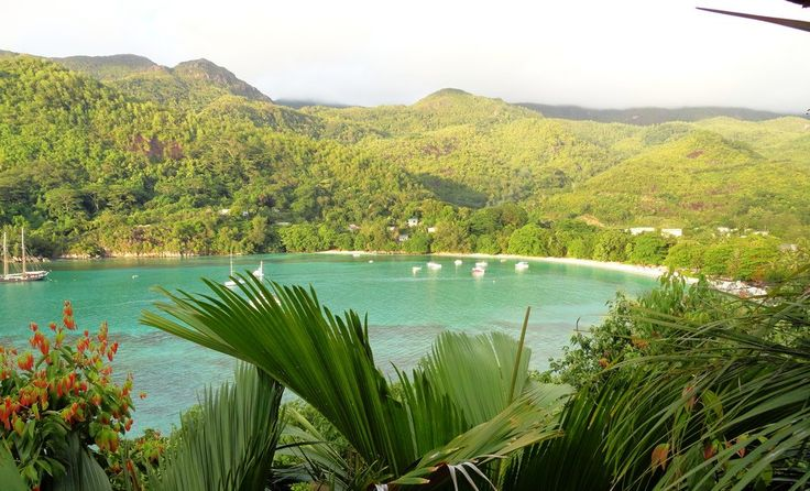 SEYCHELLES.Mahè.BLISS HOTEL. Giugno 14 giorni 12 notti dal 18 Giugno al 1 Luglio.Pern.e prima colazione 1990 euro. http://www.cocoontravel.uk #Seychelles #viaggi #journey