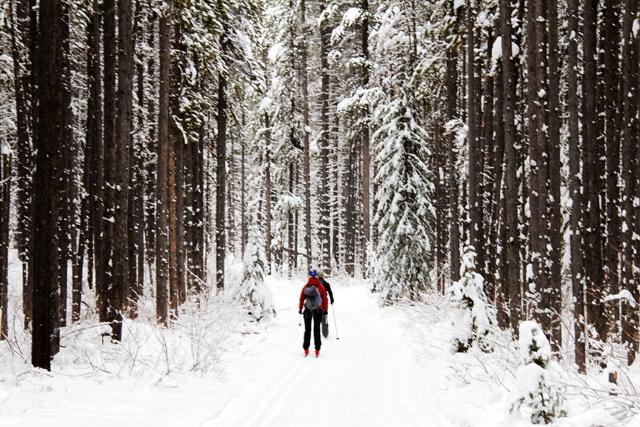 Cross country skiing: My favorite way to enjoy the outdoors during the long North Dakota winters. #OrvisWomen