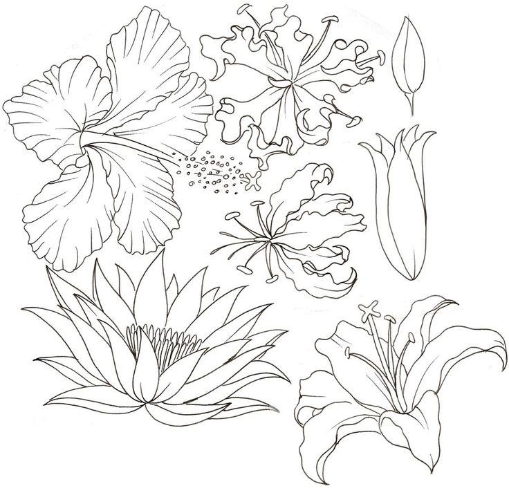 tatto flower drawings | Flower Tattoo 11 by ~Metacharis on deviantART