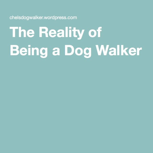 Advice on what could happen in the business of a dog walker.